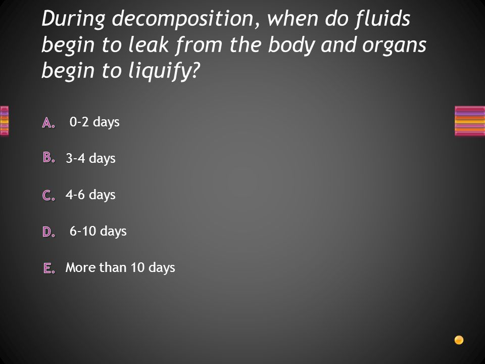 During decomposition, when do fluids begin to leak from the body and organs begin to liquify