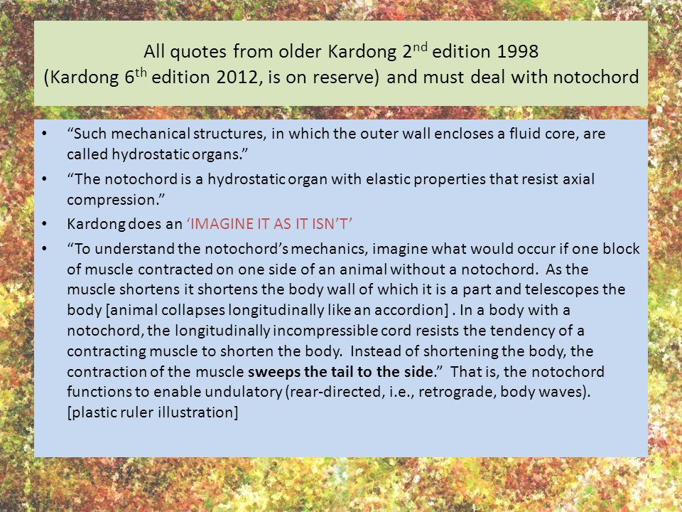 All quotes from older Kardong 2nd edition 1998 (Kardong 6th edition 2012, is on reserve) and must deal with notochord