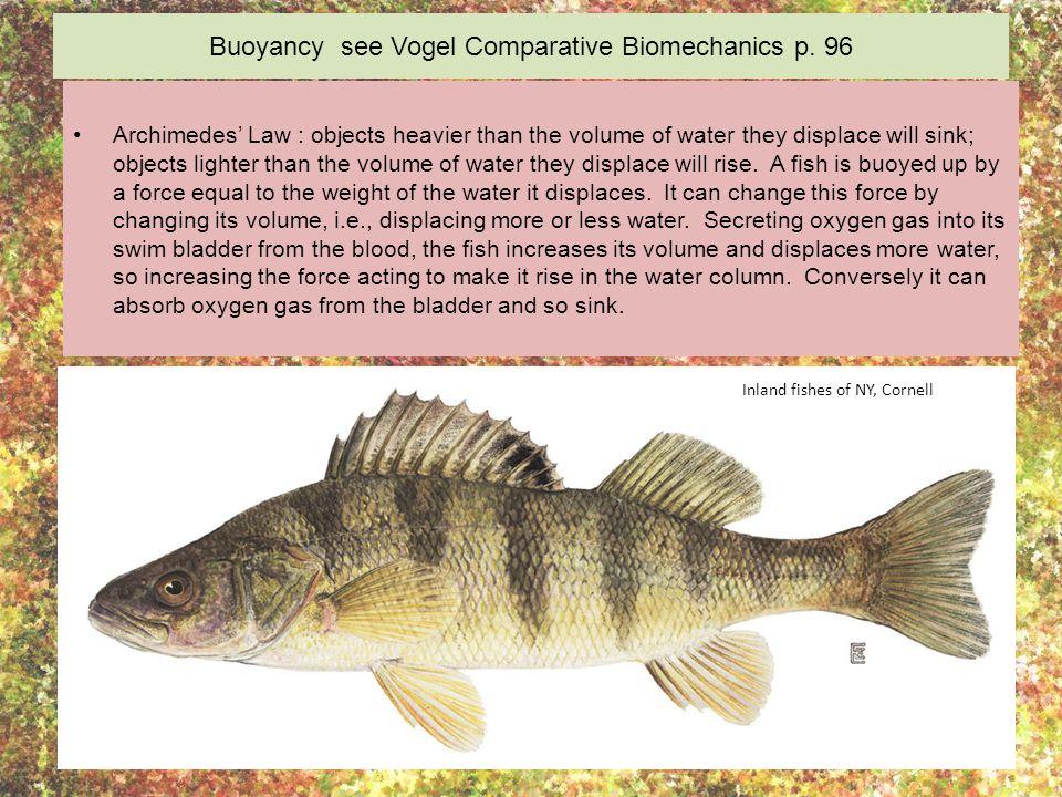 Buoyancy see Vogel Comparative Biomechanics p. 96