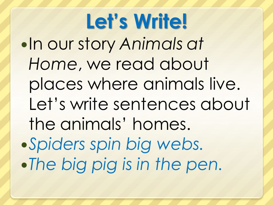 Let's Write! In our story Animals at Home, we read about places where animals live. Let's write sentences about the animals' homes.