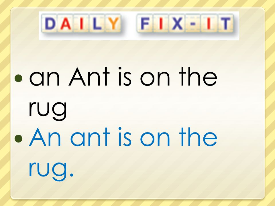 an Ant is on the rug An ant is on the rug.