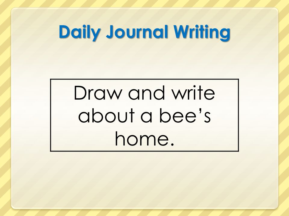 Draw and write about a bee's home.
