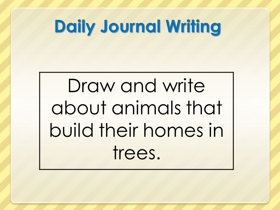 Draw and write about animals that build their homes in trees.