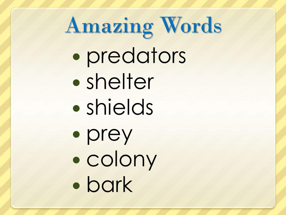Amazing Words predators shelter shields prey colony bark