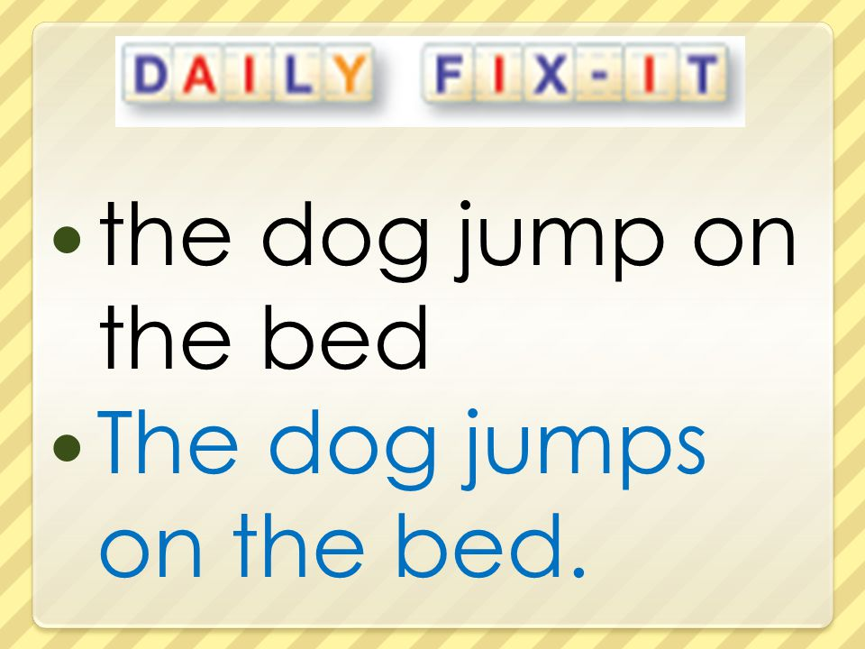 the dog jump on the bed The dog jumps on the bed.