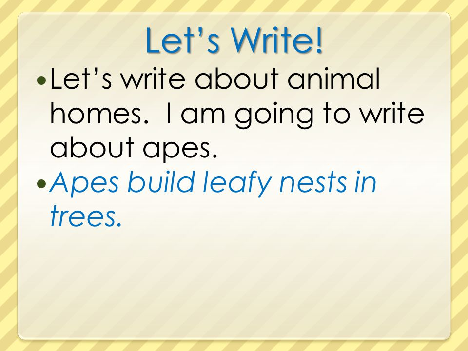 Let's Write. Let's write about animal homes. I am going to write about apes.