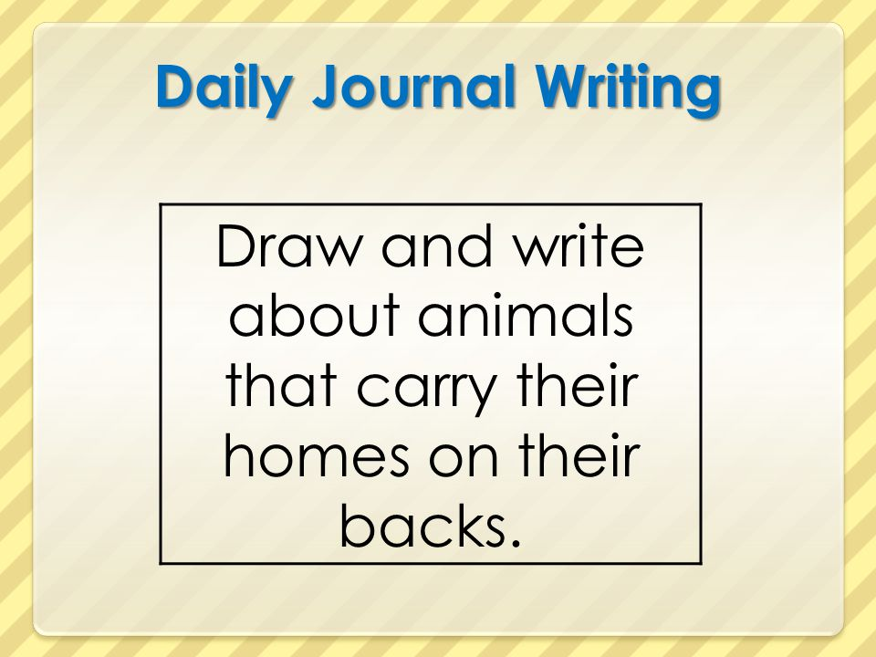 Draw and write about animals that carry their homes on their backs.