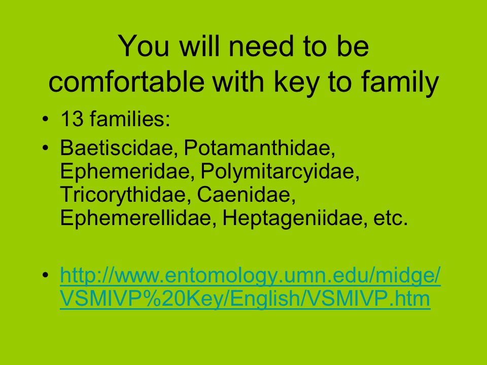 You will need to be comfortable with key to family
