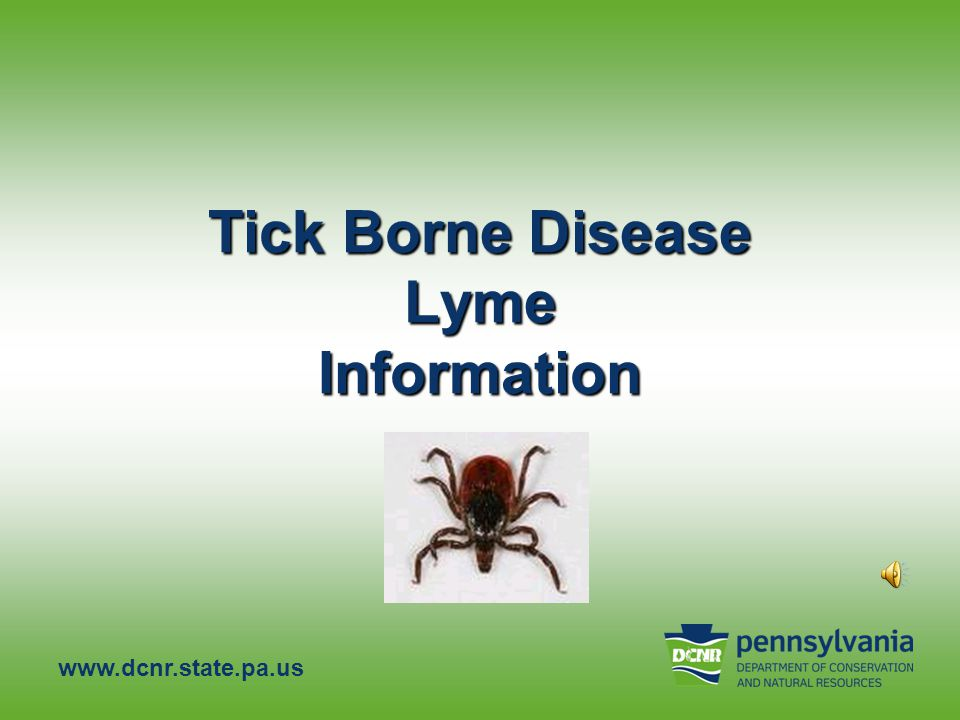 Tick borne disease lyme information ppt video online download tick borne disease lyme information sciox Images