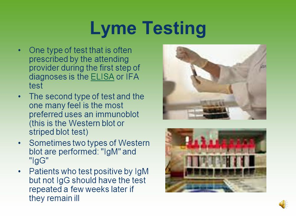 Lyme Testing One type of test that is often prescribed by the attending provider during the first step of diagnoses is the ELISA or IFA test.