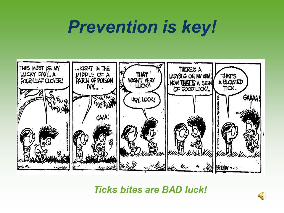 Ticks bites are BAD luck!