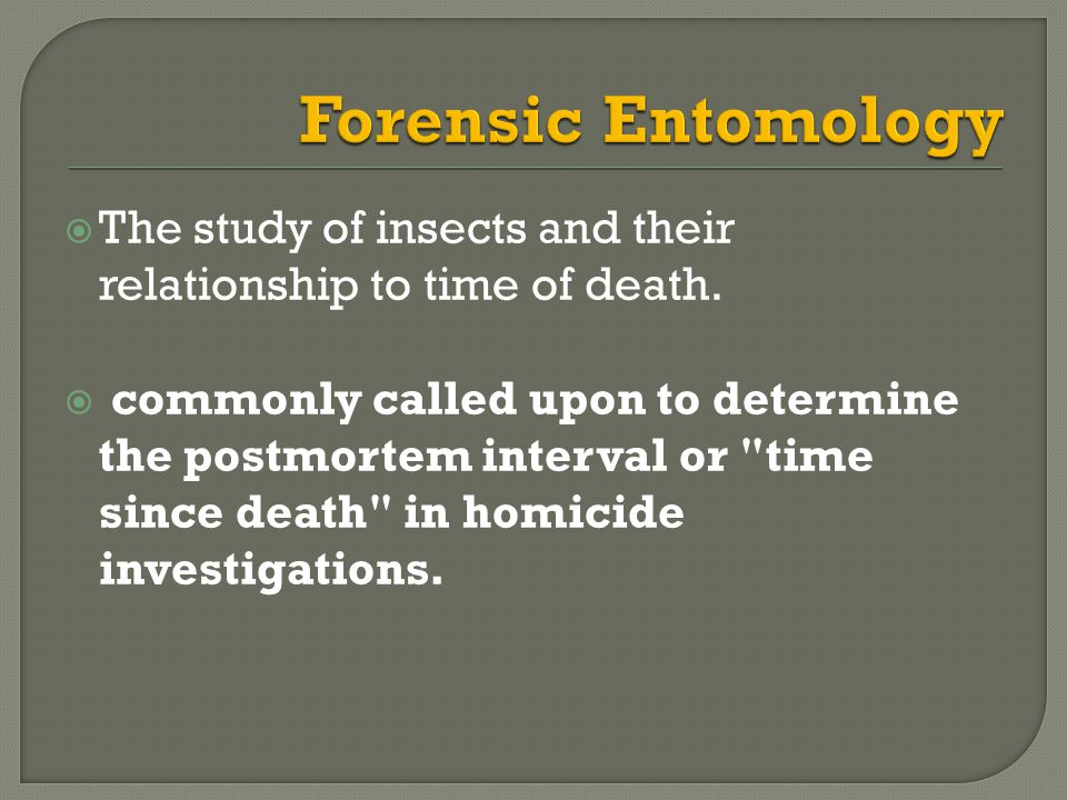Forensic Entomology The study of insects and their relationship to time of death.