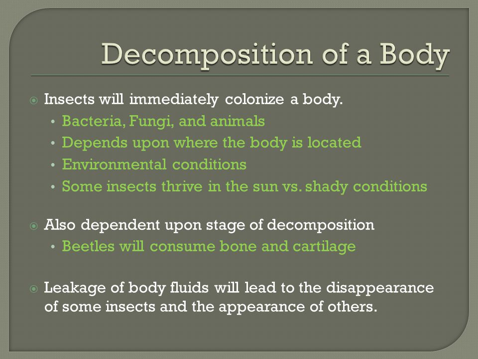 Decomposition of a Body