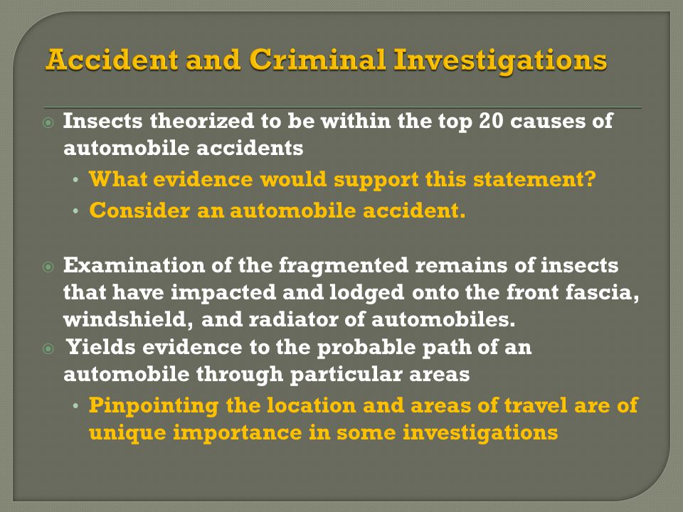 Accident and Criminal Investigations