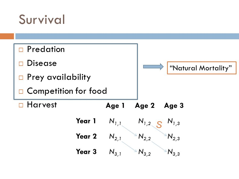 Survival Predation Disease Prey availability Competition for food