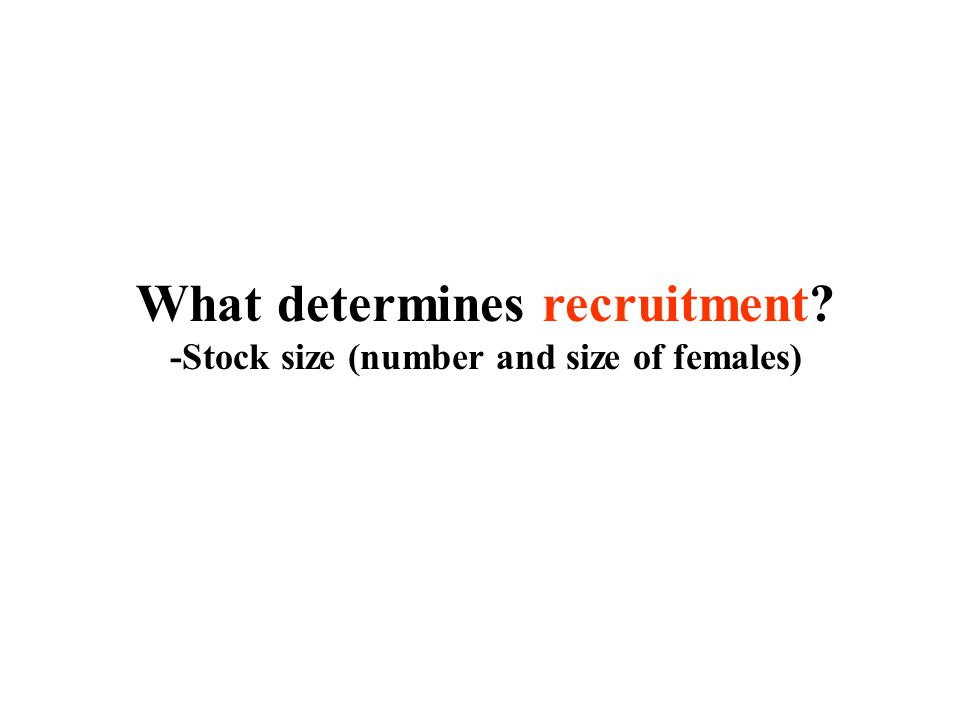 What determines recruitment -Stock size (number and size of females)