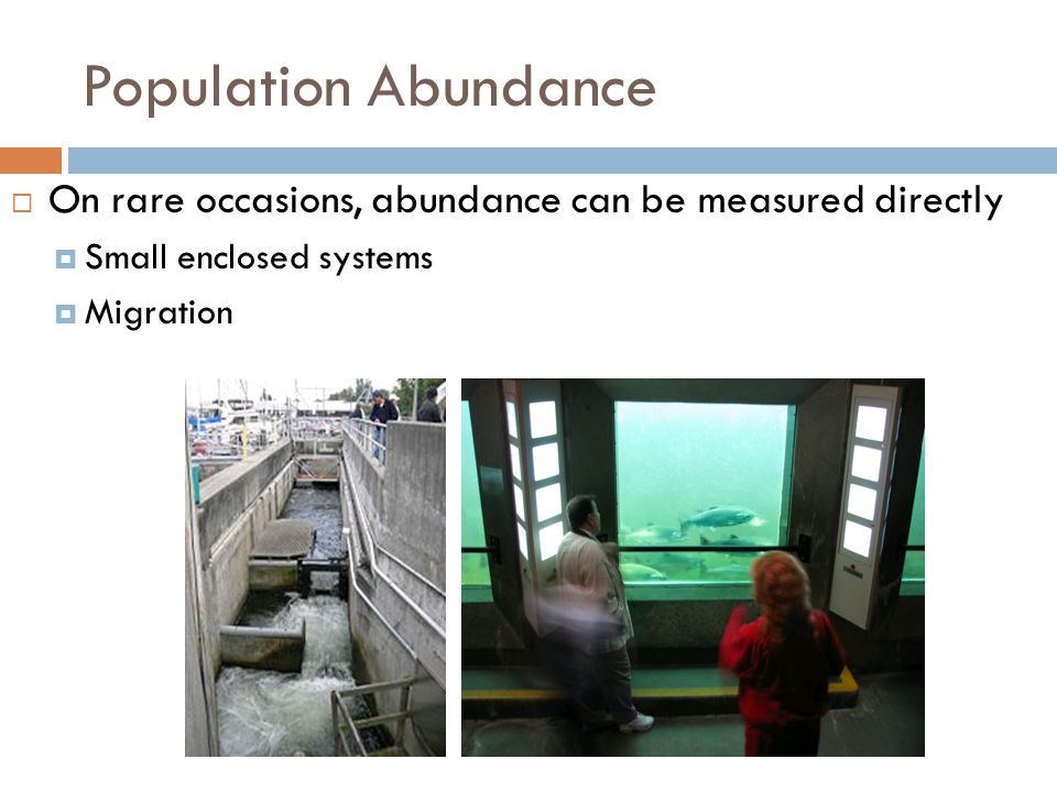 Population Abundance On rare occasions, abundance can be measured directly. Small enclosed systems.
