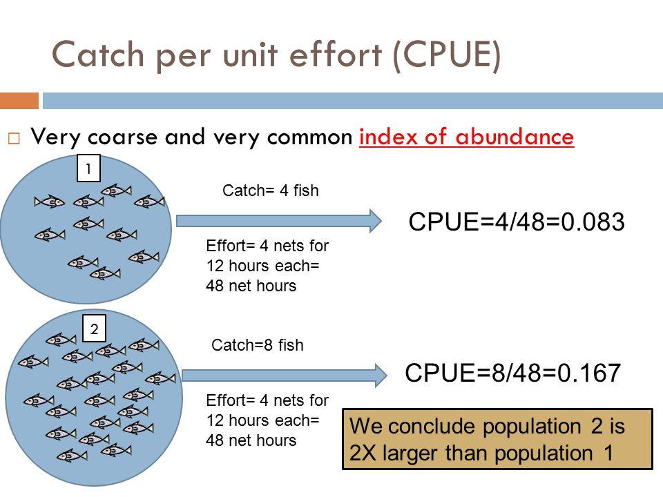 Catch per unit effort (CPUE)
