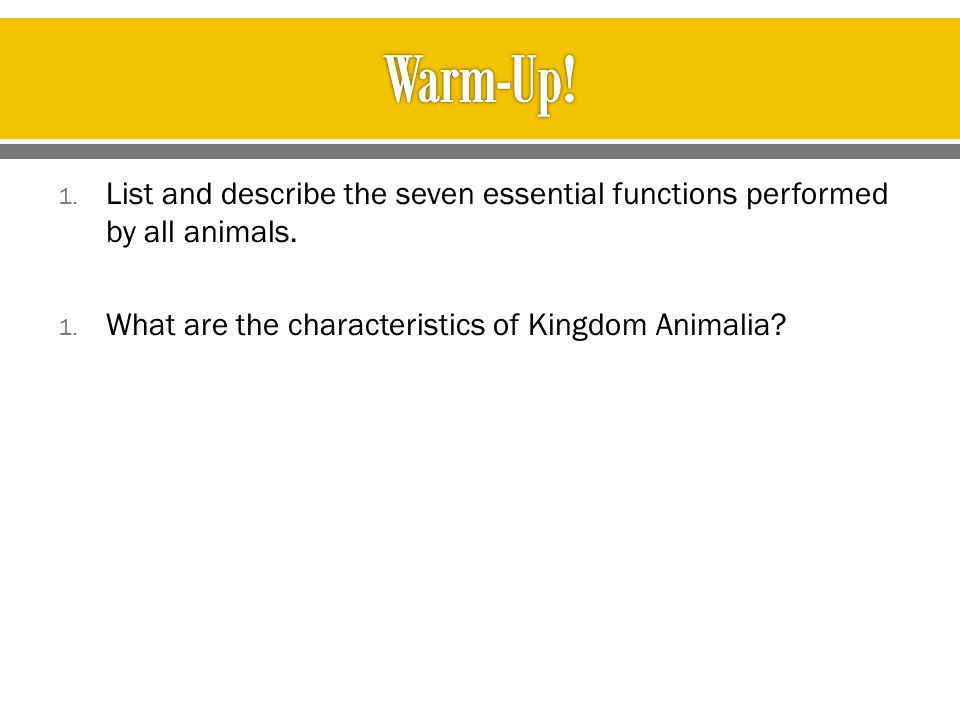 Warm-Up. List and describe the seven essential functions performed by all animals.