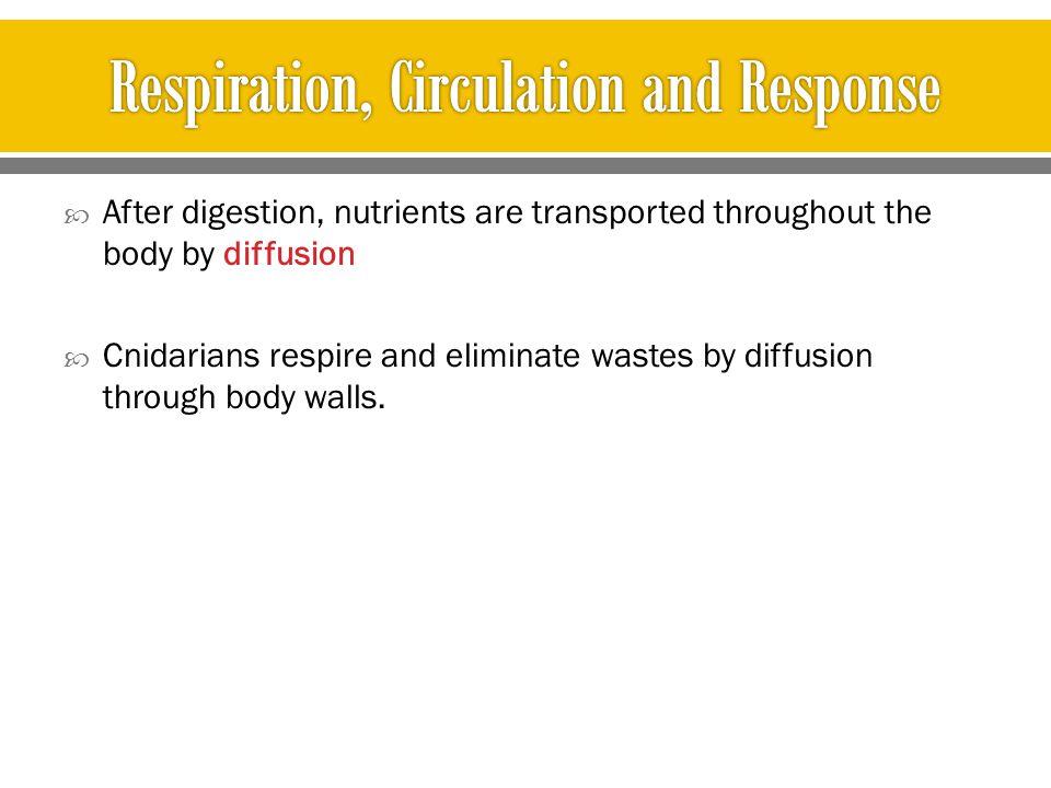 Respiration, Circulation and Response