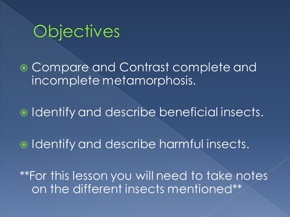 Objectives Compare and Contrast complete and incomplete metamorphosis.
