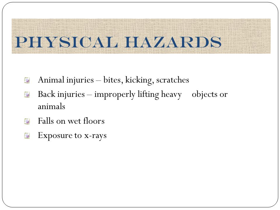 Physical Hazards Animal injuries – bites, kicking, scratches