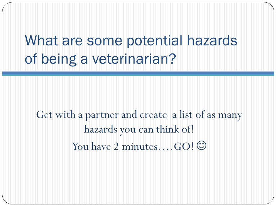 What are some potential hazards of being a veterinarian