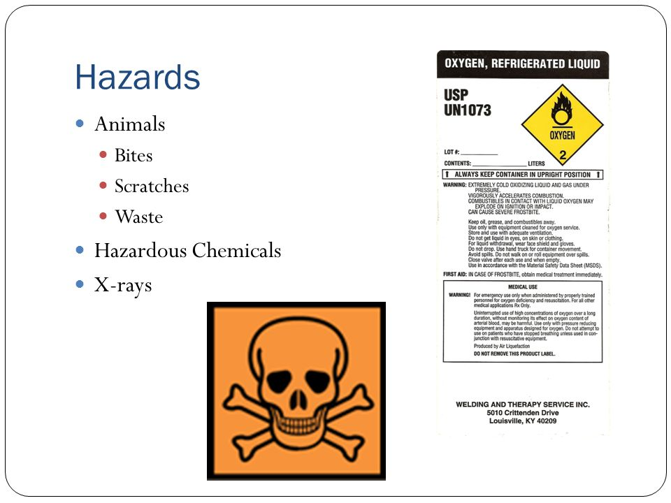 Hazards Animals Bites Scratches Waste Hazardous Chemicals X-rays
