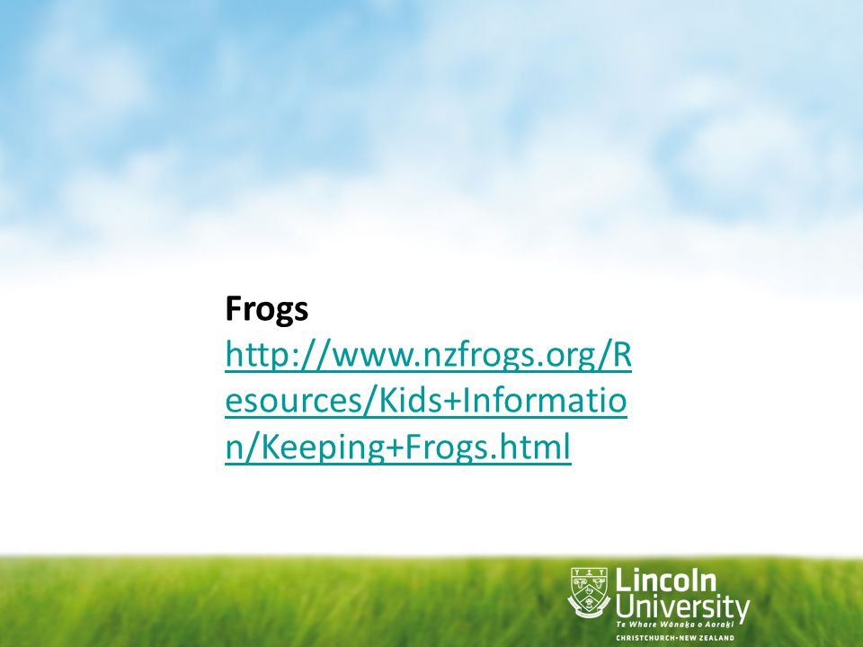 Frogs http://www.nzfrogs.org/Resources/Kids+Information/Keeping+Frogs.html