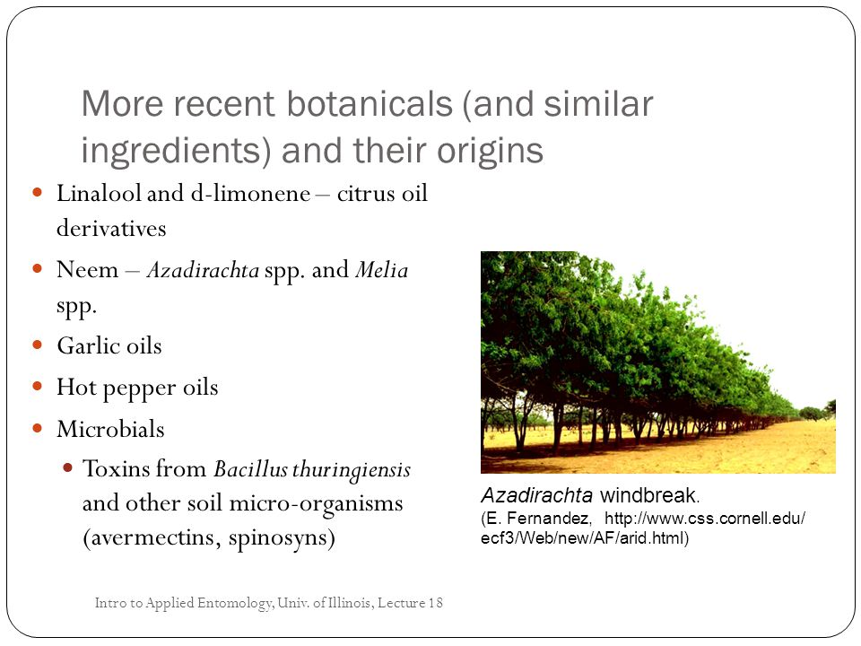 More recent botanicals (and similar ingredients) and their origins