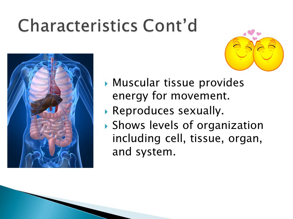 Characteristics Cont'd