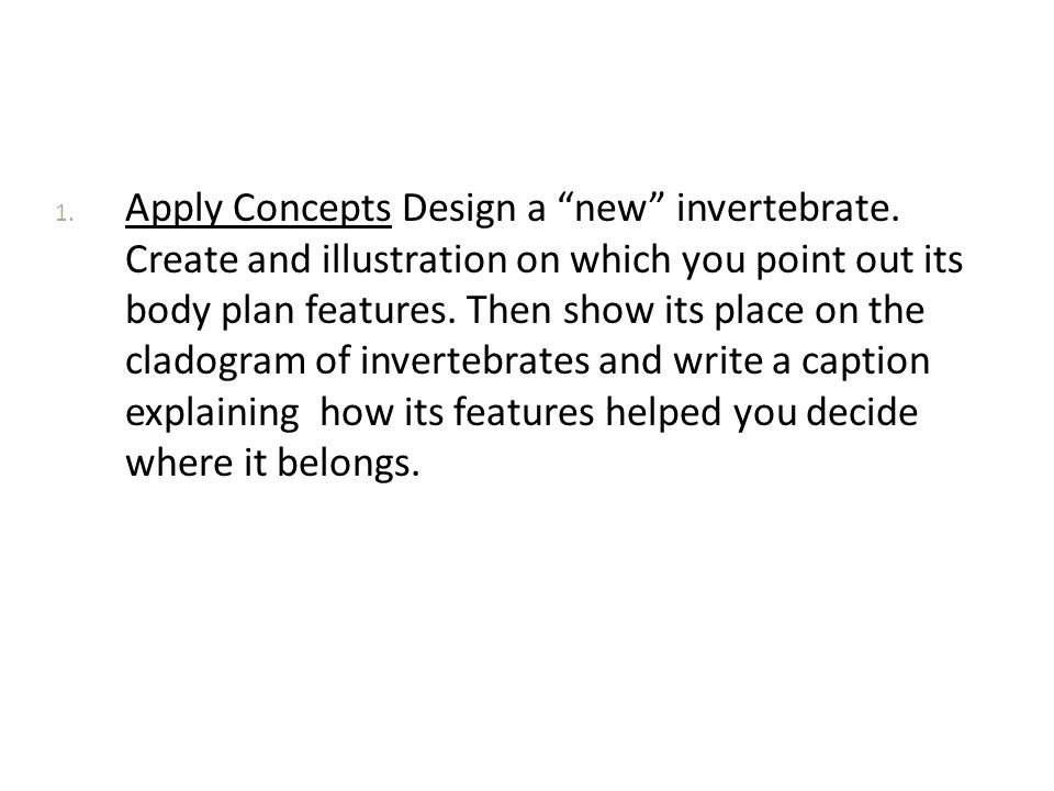 Apply Concepts Design a new invertebrate