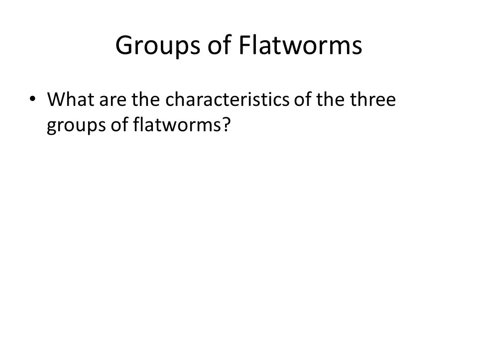 Groups of Flatworms What are the characteristics of the three groups of flatworms