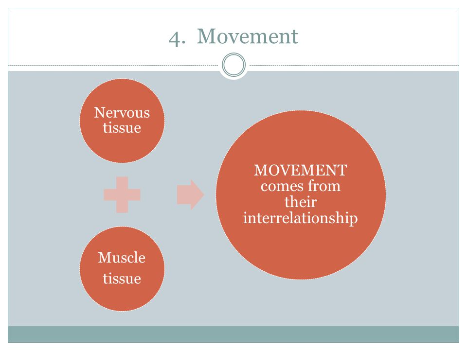 MOVEMENT comes from their interrelationship