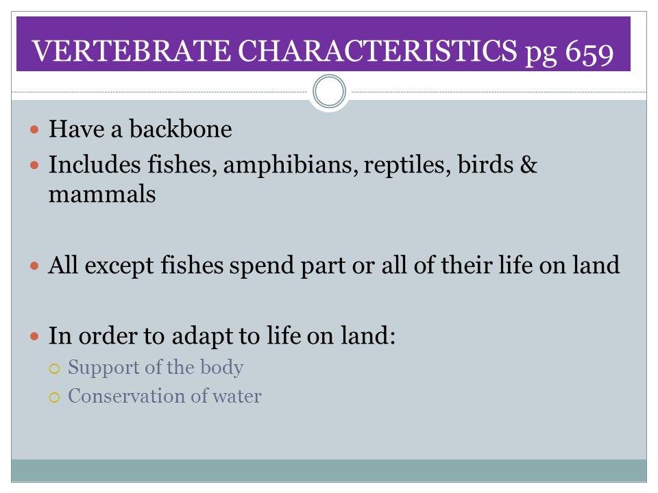 VERTEBRATE CHARACTERISTICS pg 659
