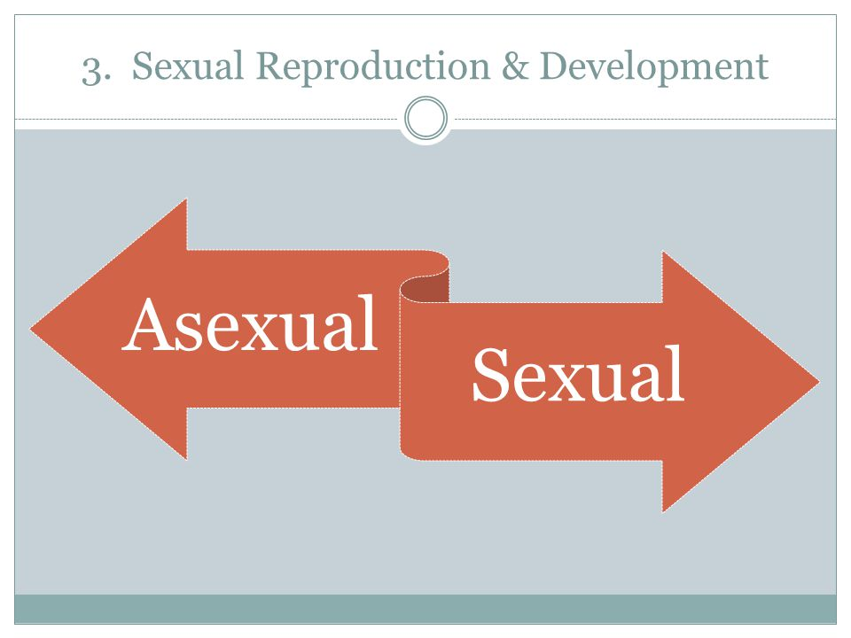 3. Sexual Reproduction & Development