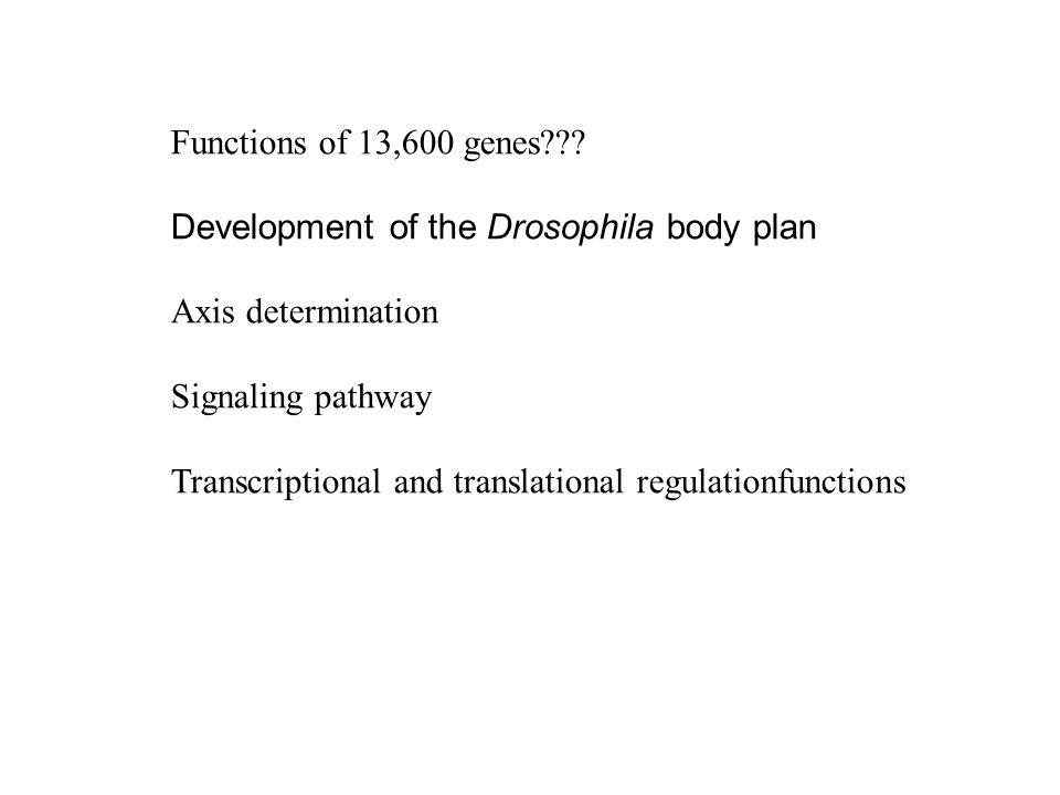 determination of the body by genes A sex-determination system is a biological system that determines the development of sexual characteristics in an organism  which drives the body toward the female pathway in y-centered sex determination, the sry gene is the main gene in determining male characteristics,.