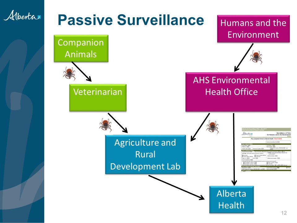 Passive Surveillance Humans and the Environment Companion Animals