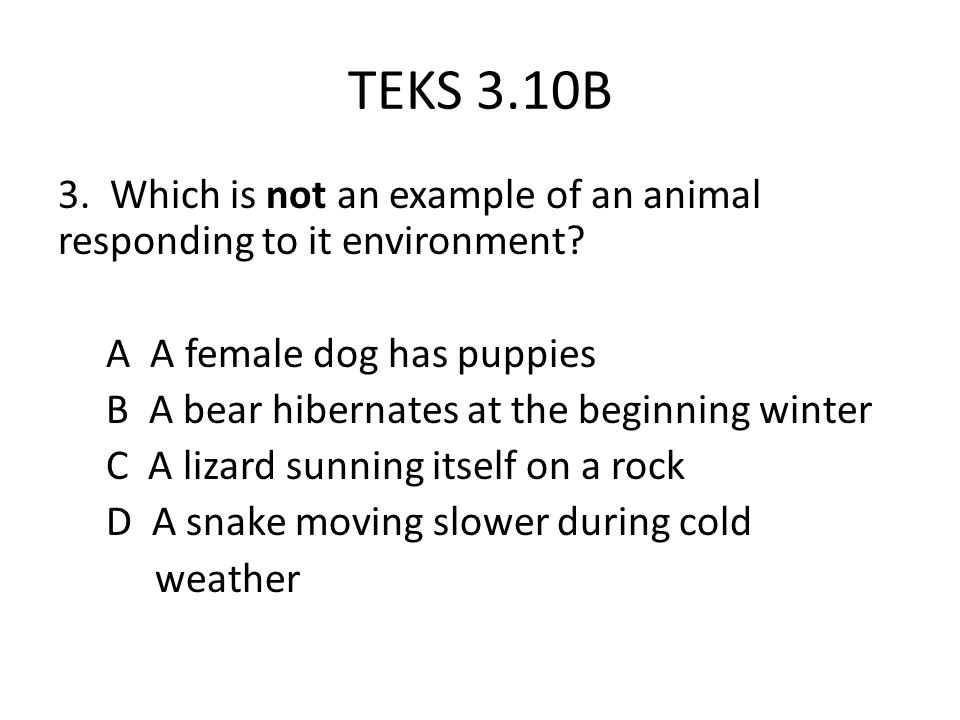 TEKS 3.10B