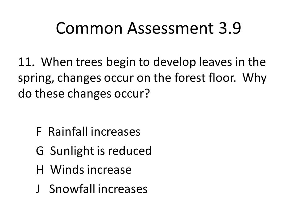 Common Assessment 3.9