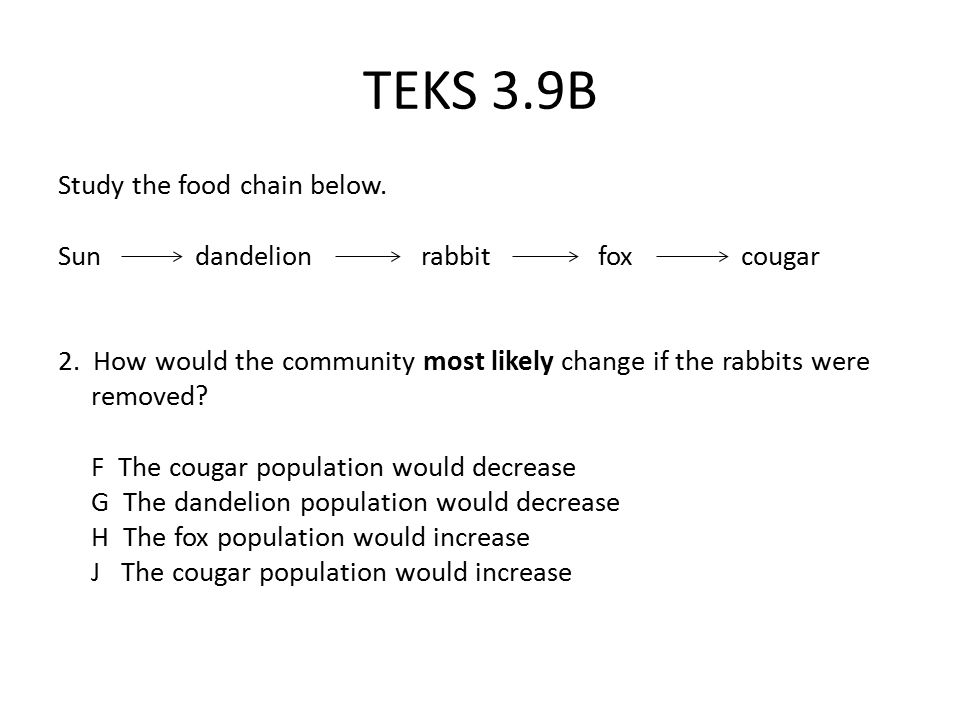 TEKS 3.9B