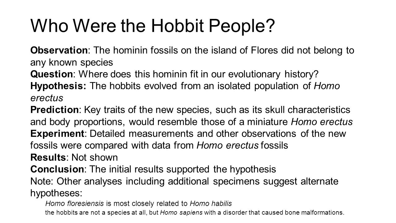Who Were the Hobbit People
