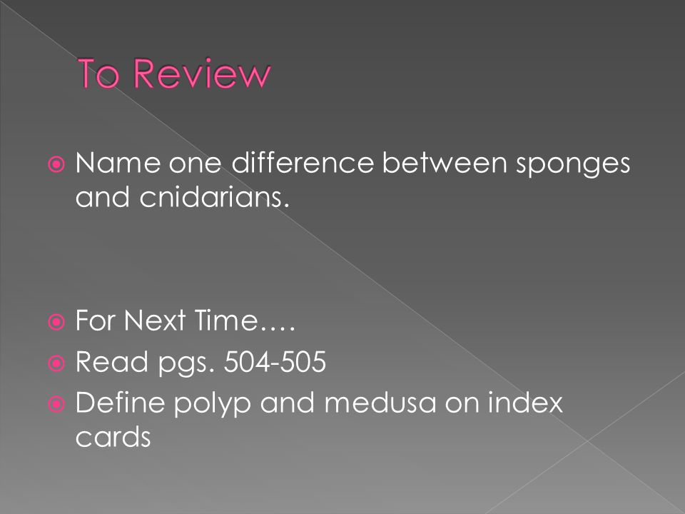 To Review Name one difference between sponges and cnidarians.
