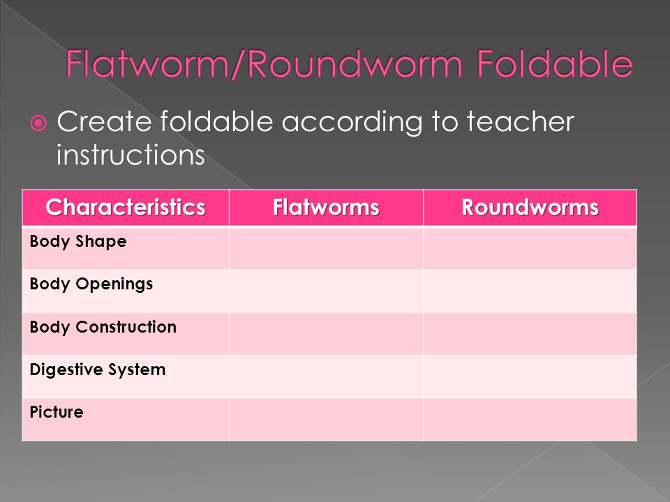 Flatworm/Roundworm Foldable