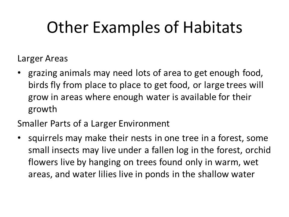 Other Examples of Habitats