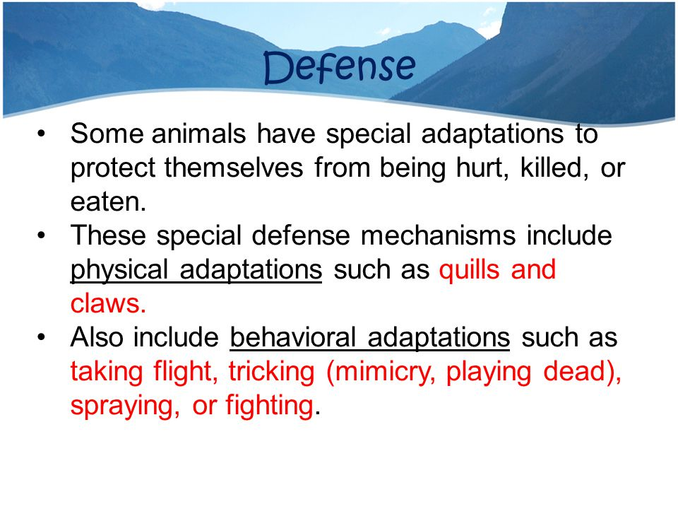 Defense Some animals have special adaptations to protect themselves from being hurt, killed, or eaten.