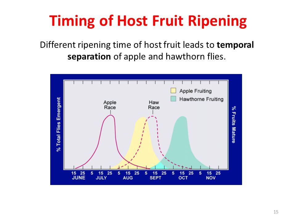 Timing of Host Fruit Ripening