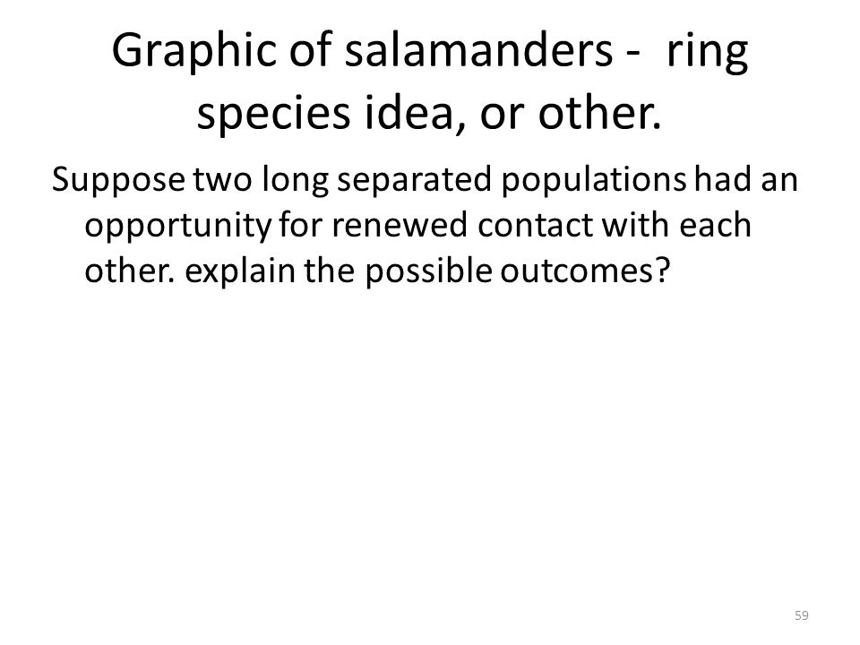 Graphic of salamanders - ring species idea, or other.