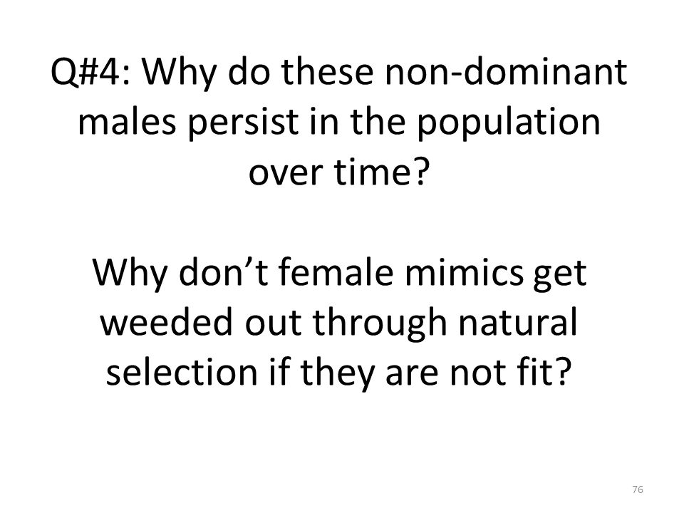 Q#4: Why do these non-dominant males persist in the population over time Why don't female mimics get weeded out through natural selection if they are not fit