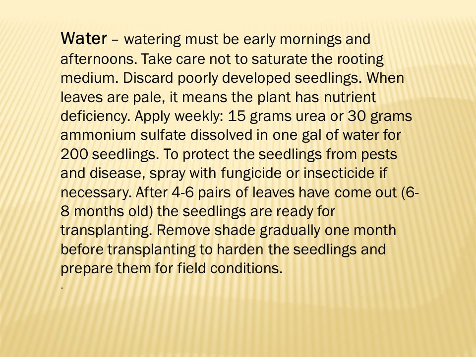 Water – watering must be early mornings and afternoons